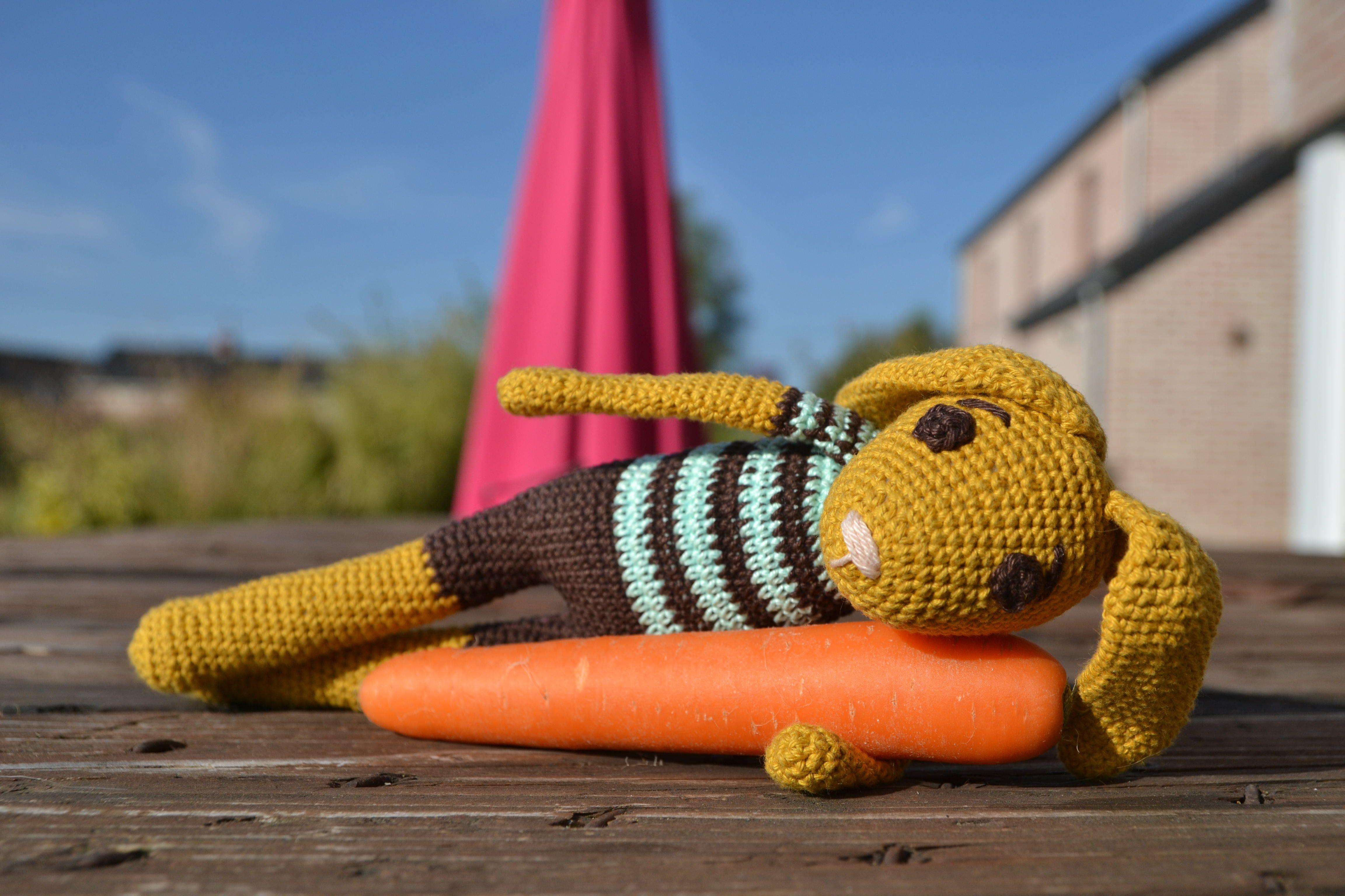 Martin Conejo Crochet
